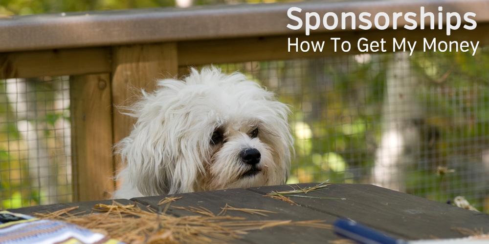 Dog Begging Sponsorship